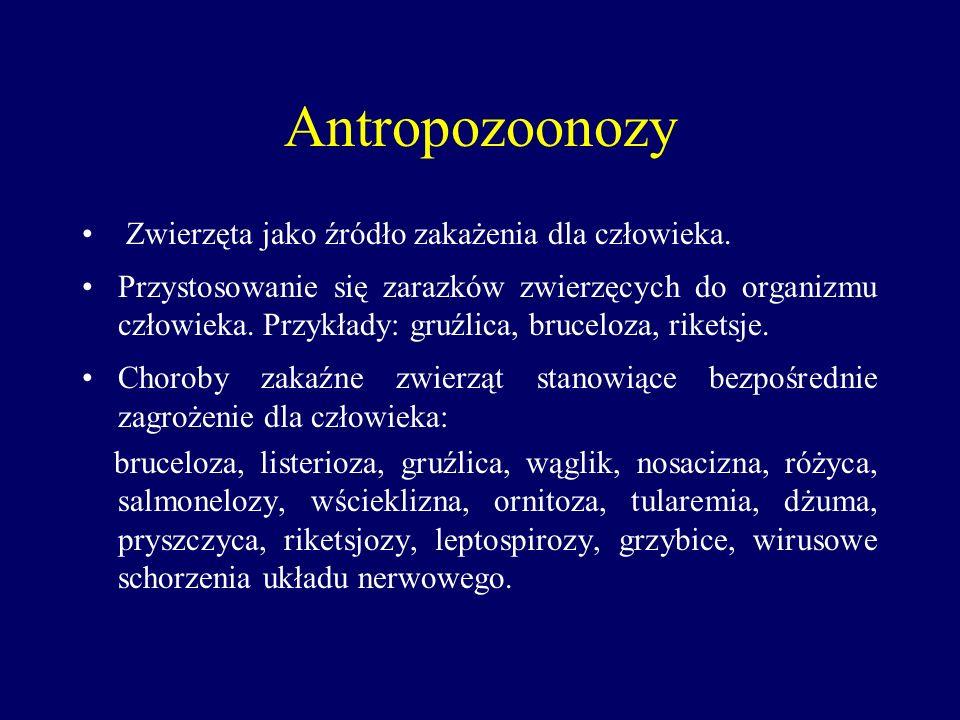 Antropozoonozy Zwierzęta jako źródło zakażenia dla człowieka. Przystosowanie się zarazków zwierzęcych do organizmu człowieka. Przykłady: gruźlica, bru