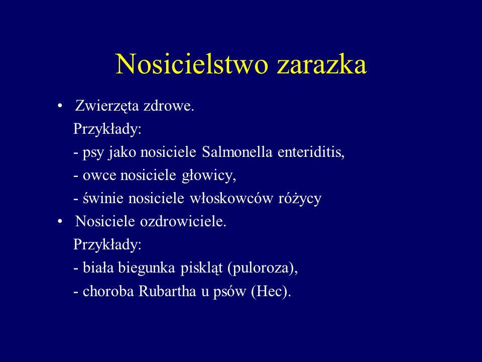 Nosicielstwo zarazka Zwierzęta zdrowe. Przykłady: - psy jako nosiciele Salmonella enteriditis, - owce nosiciele głowicy, - świnie nosiciele włoskowców