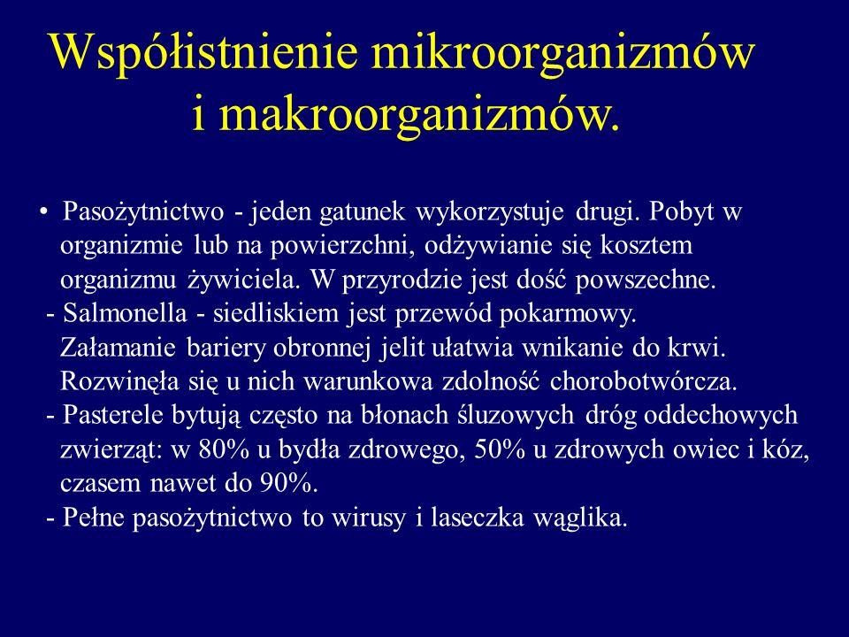 Współistnienie mikroorganizmów i makroorganizmów. Pasożytnictwo - jeden gatunek wykorzystuje drugi. Pobyt w organizmie lub na powierzchni, odżywianie