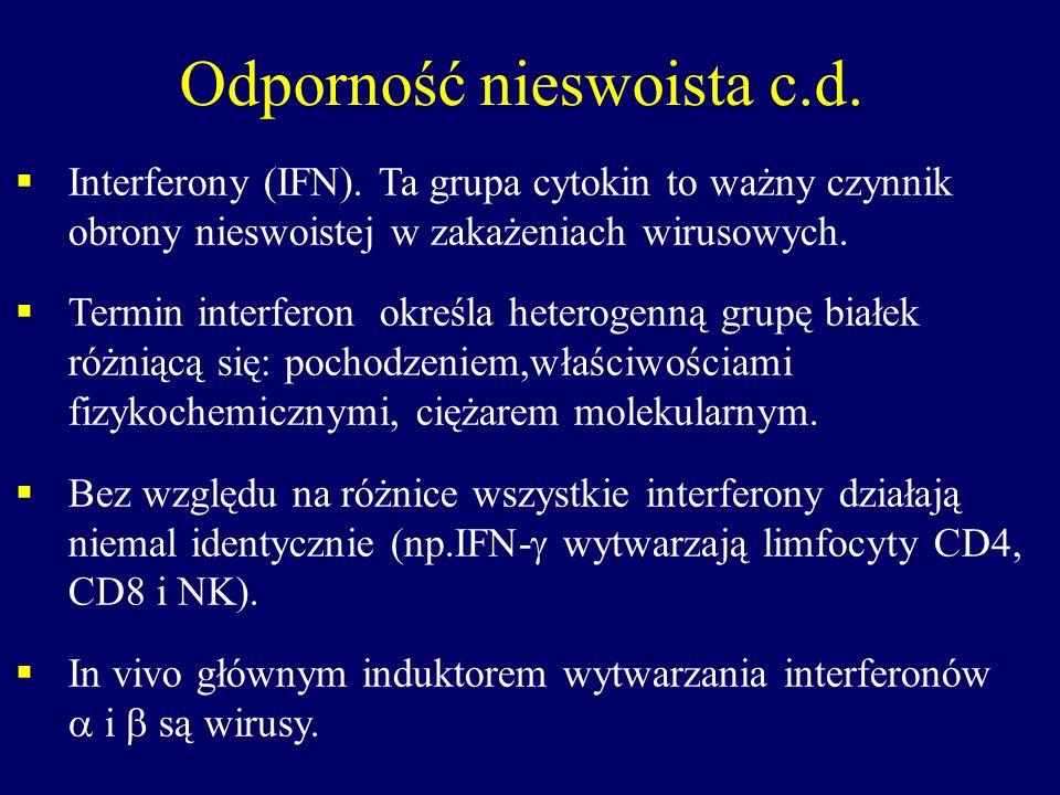 Odporność nieswoista c.d. Interferony (IFN). Ta grupa cytokin to ważny czynnik obrony nieswoistej w zakażeniach wirusowych. Termin interferon określa
