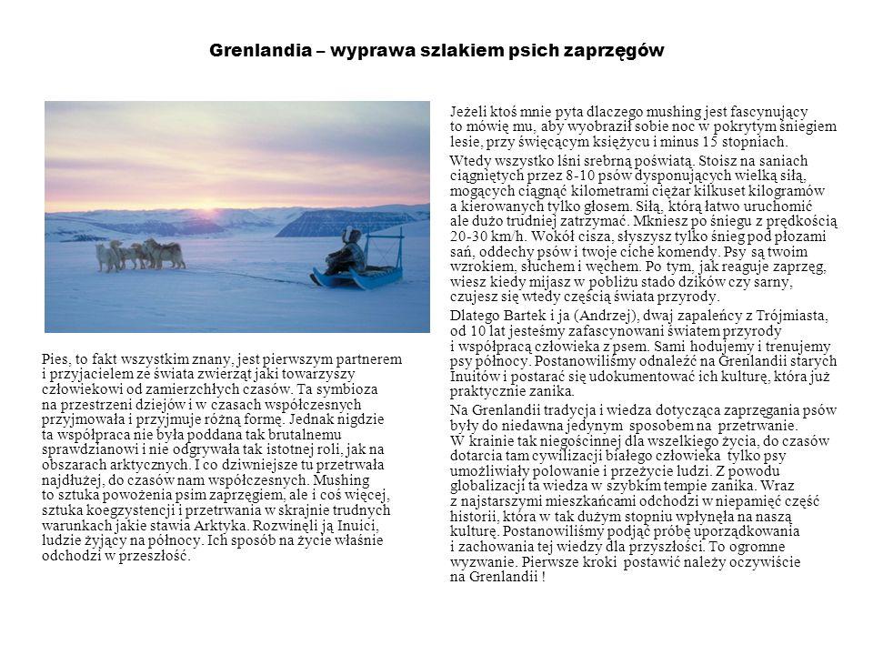 Grenlandia – wyprawa szlakiem psich zaprzęgów Pies, to fakt wszystkim znany, jest pierwszym partnerem i przyjacielem ze świata zwierząt jaki towarzysz