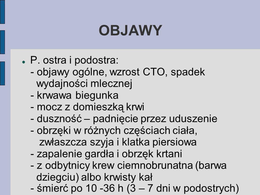 OBJAWY P.
