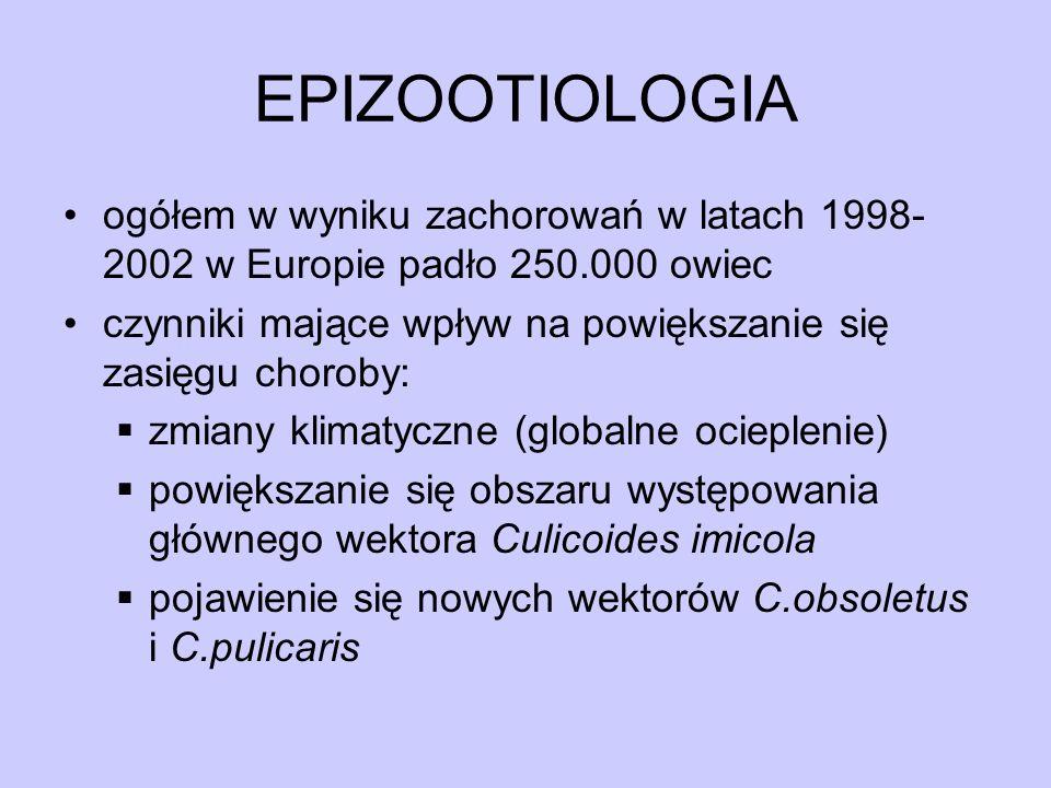 EPIZOOTIOLOGIA ogółem w wyniku zachorowań w latach 1998- 2002 w Europie padło 250.000 owiec czynniki mające wpływ na powiększanie się zasięgu choroby: