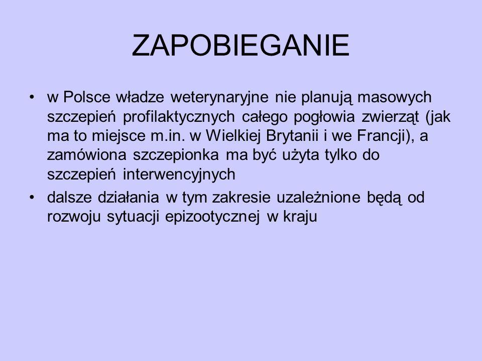 ZAPOBIEGANIE w Polsce władze weterynaryjne nie planują masowych szczepień profilaktycznych całego pogłowia zwierząt (jak ma to miejsce m.in. w Wielkie