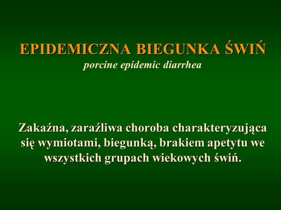 EPIDEMICZNA BIEGUNKA ŚWIŃ EPIDEMICZNA BIEGUNKA ŚWIŃ porcine epidemic diarrhea Zakaźna, zaraźliwa choroba charakteryzująca się wymiotami, biegunką, bra