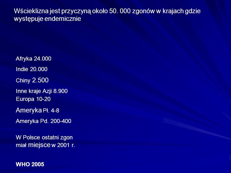 Symetria helikalna Kształt pocisku 75x180 nm