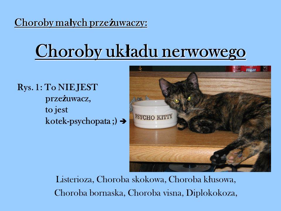 Listerioza Inne nazwy: ( ł ac.) listeriosis (ang.) listeriosis (ang.) circling disease (ros.) listerioz
