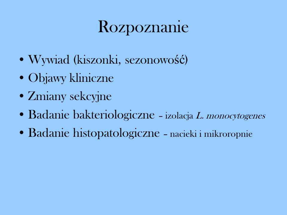 Rozpoznanie Wywiad (kiszonki, sezonowo ść ) Objawy kliniczne Zmiany sekcyjne Badanie bakteriologiczne – izolacja L. monocytogenes Badanie histopatolog