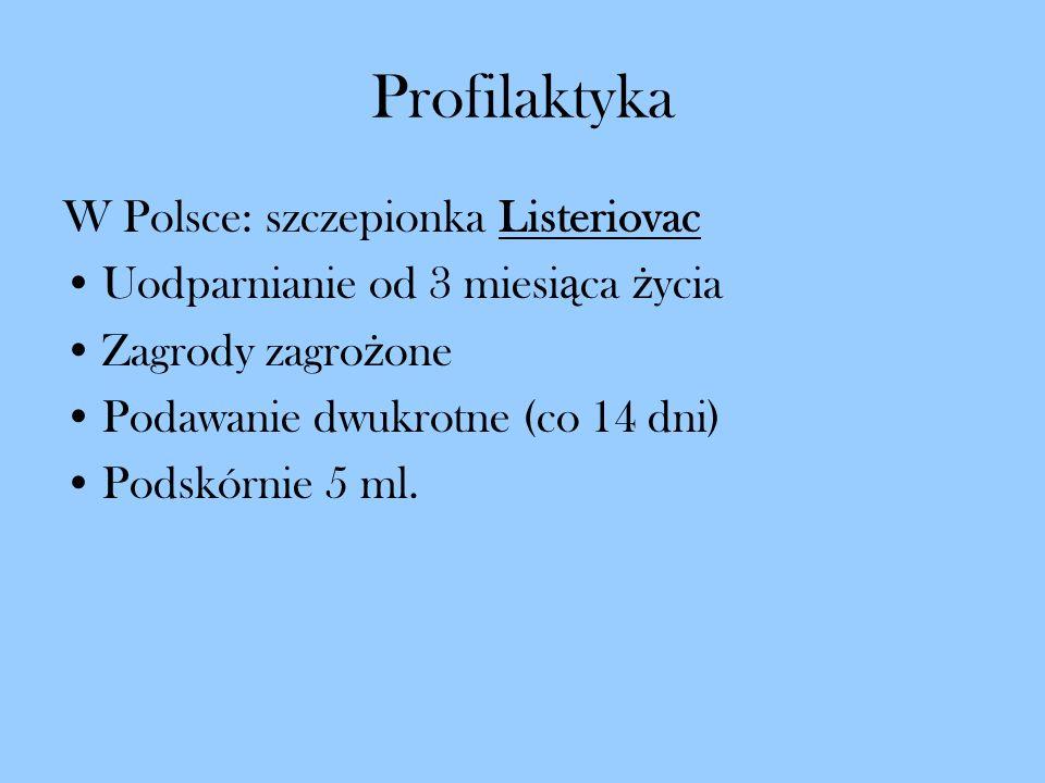 Profilaktyka W Polsce: szczepionka Listeriovac Uodparnianie od 3 miesi ą ca ż ycia Zagrody zagro ż one Podawanie dwukrotne (co 14 dni) Podskórnie 5 ml