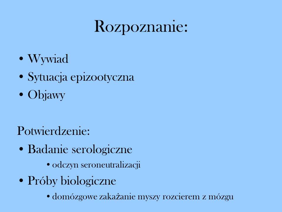 Rozpoznanie: Wywiad Sytuacja epizootyczna Objawy Potwierdzenie: Badanie serologiczne odczyn seroneutralizacji Próby biologiczne domózgowe zaka ż anie