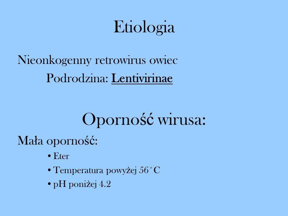 Etiologia Nieonkogenny retrowirus owiec Podrodzina: Lentivirinae Oporno ść wirusa: Ma ł a oporno ść : Eter Temperatura powy ż ej 56˚C pH poni ż ej 4.2