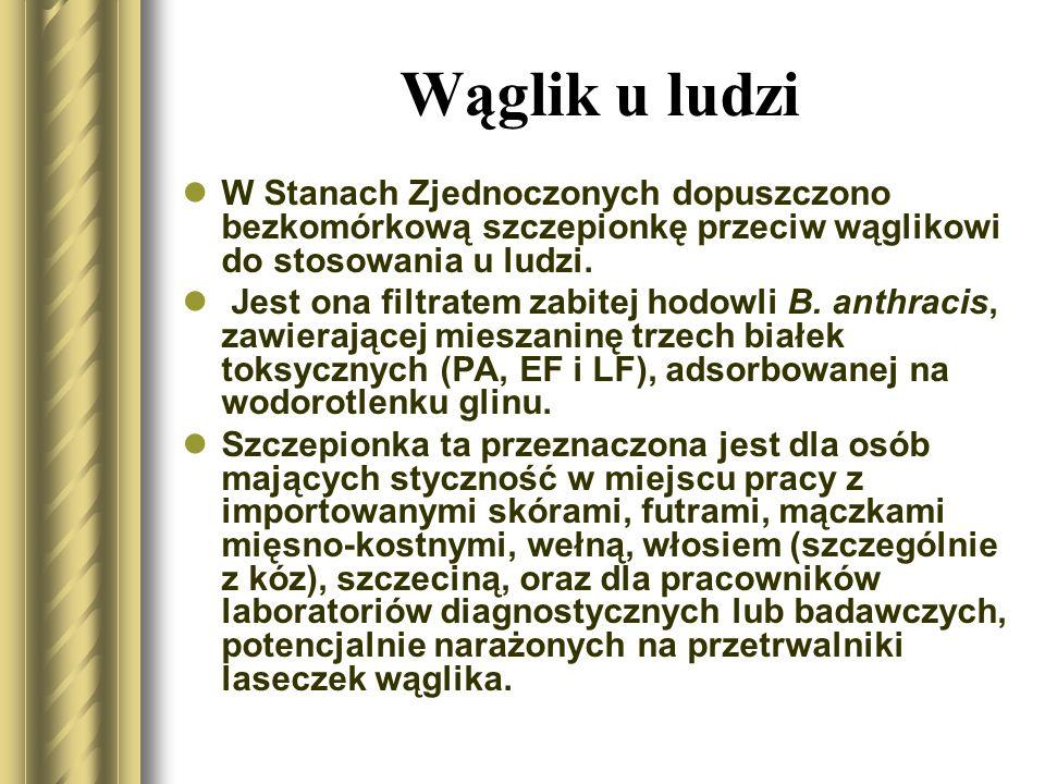 Wąglik u ludzi Komitet Doradczy ds.