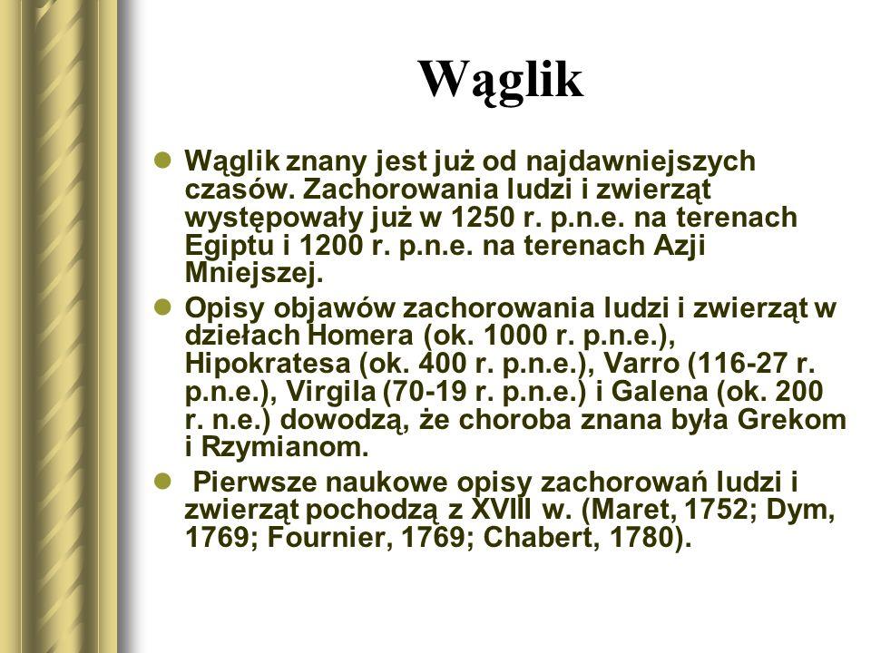 Wąglik Pierwsze wzmianki o występowaniu wąglika w Polsce pochodzą z początku XVIII w.