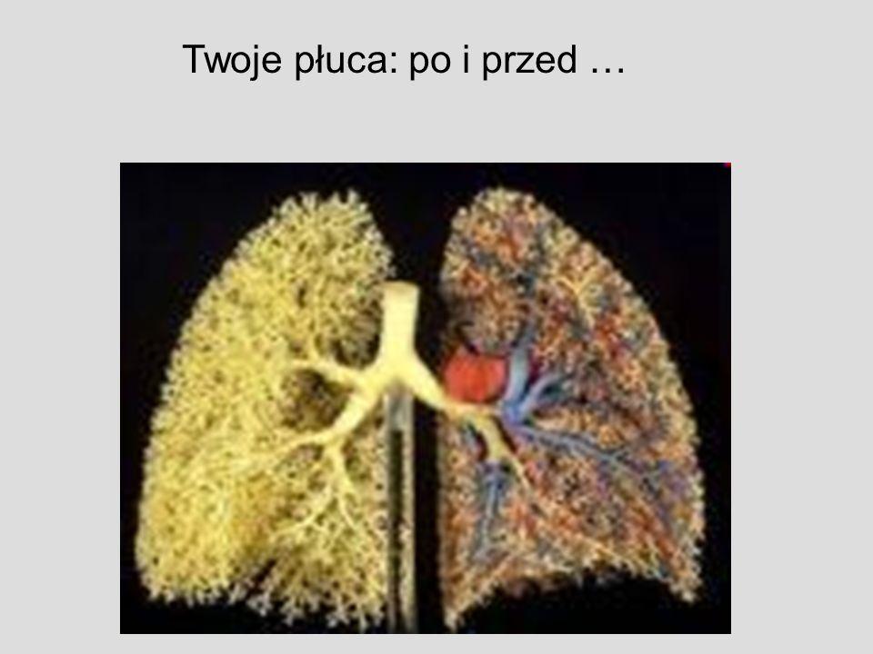 Twoje płuca: po i przed …
