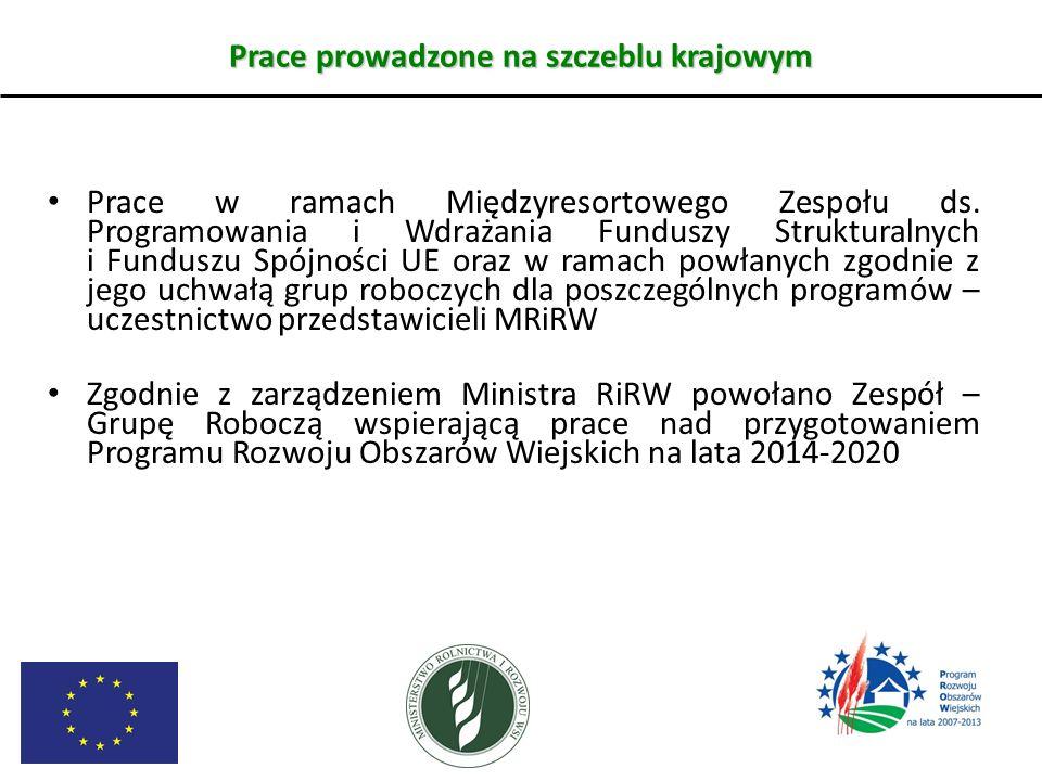 Prace prowadzone na szczeblu krajowym Prace w ramach Międzyresortowego Zespołu ds. Programowania i Wdrażania Funduszy Strukturalnych i Funduszu Spójno
