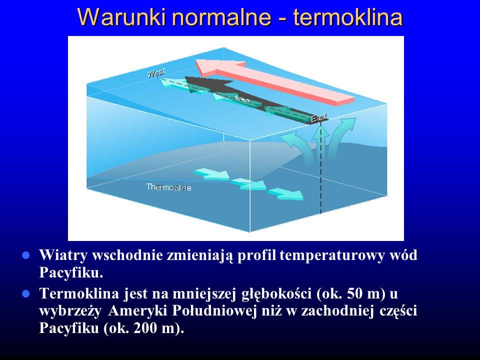 Warunki normalne - termoklina Wiatry wschodnie zmieniają profil temperaturowy wód Pacyfiku. Termoklina jest na mniejszej głębokości (ok. 50 m) u wybrz