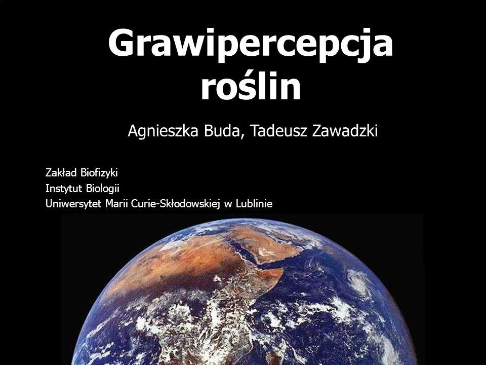 Grawipercepcja roślin Agnieszka Buda, Tadeusz Zawadzki Zakład Biofizyki Instytut Biologii Uniwersytet Marii Curie-Skłodowskiej w Lublinie