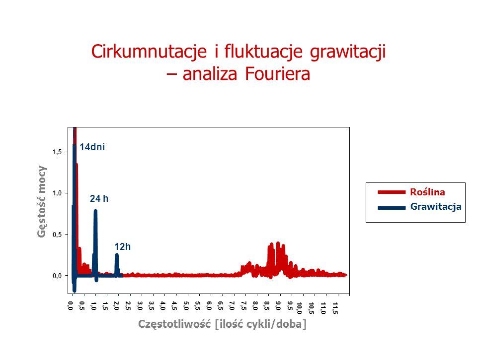 Cirkumnutacje i fluktuacje grawitacji – analiza Fouriera Częstotliwość [ilość cykli/doba] 0,04,04,55,05,56,06,57,07,58,08,59,09,5 10,010,5 11,0 11,5 G
