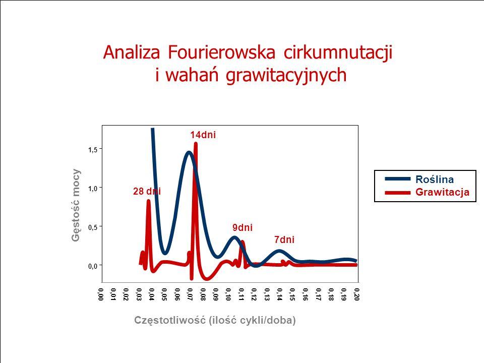 Analiza Fourierowska cirkumnutacji i wahań grawitacyjnych 0,000,010,020,030,04 0,05 0,060,070,08 0,09 0,10 0,11 0,12 0,13 0,14 0,15 0,160,17 0,18 0,19