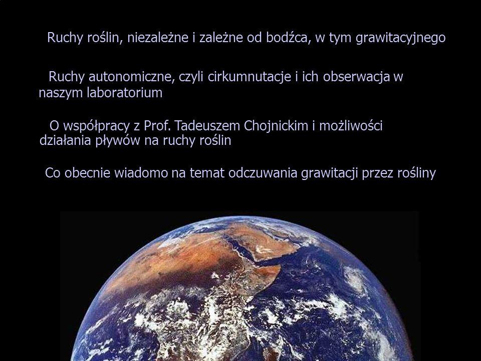 Ruchy roślin, niezależne i zależne od bodźca, w tym grawitacyjnego O współpracy z Prof. Tadeuszem Chojnickim i możliwości działania pływów na ruchy ro
