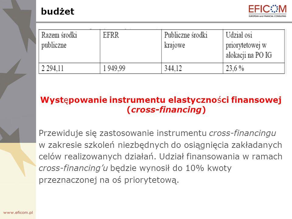 budżet Występowanie instrumentu elastyczności finansowej (cross-financing) Przewiduje się zastosowanie instrumentu cross-financingu w zakresie szkoleń niezbędnych do osiągnięcia zakładanych celów realizowanych działań.