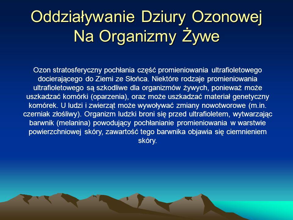 Oddziaływanie Dziury Ozonowej Na Organizmy Żywe Ozon stratosferyczny pochłania część promieniowania ultrafioletowego docierającego do Ziemi ze Słońca.