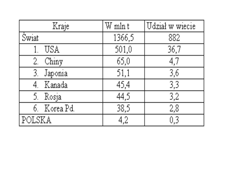 KrajeW mld szt (2003) Udział w świecie w % Świat5 540100 1.Chiny174031,3 2.USA5009 3.Japonia2204 4.Rosja3807 5.Niemcy2304,2 POLSKA801,4