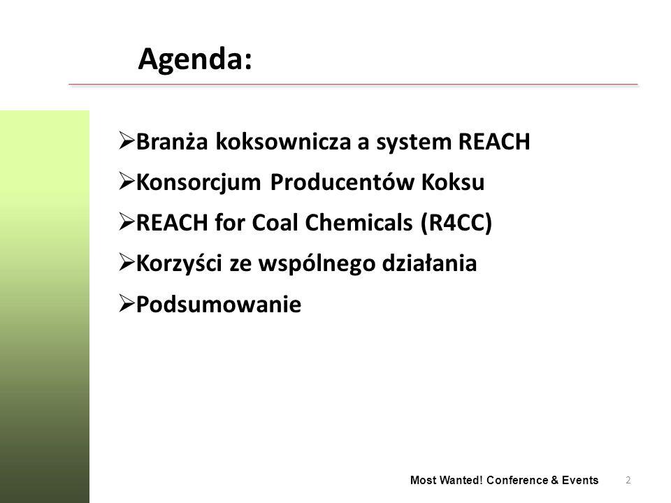 2 Most Wanted! Conference & Events Agenda: Branża koksownicza a system REACH Konsorcjum Producentów Koksu REACH for Coal Chemicals (R4CC) Korzyści ze