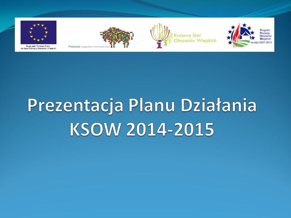 Realizacja w okresie styczeń 2012 – grudzień 2013 Budżet: 3,9 mln zł + VAT Perspektywa 2012-2013