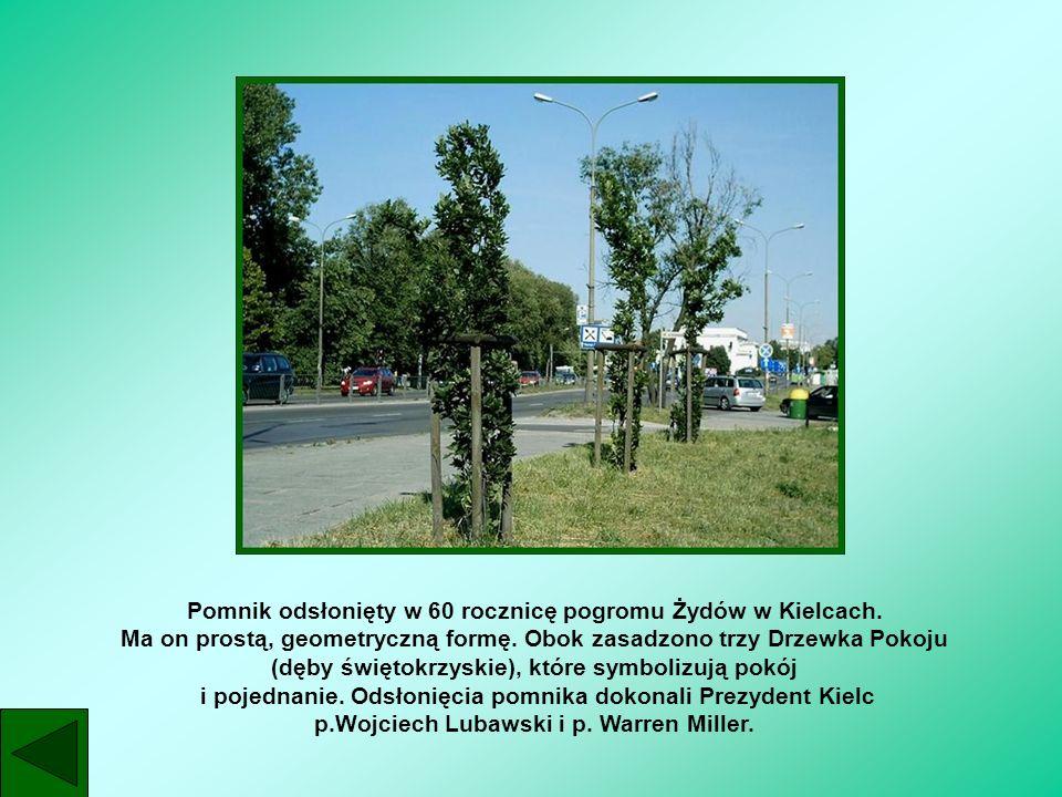 Pomnik odsłonięty w 60 rocznicę pogromu Żydów w Kielcach. Ma on prostą, geometryczną formę. Obok zasadzono trzy Drzewka Pokoju (dęby świętokrzyskie),