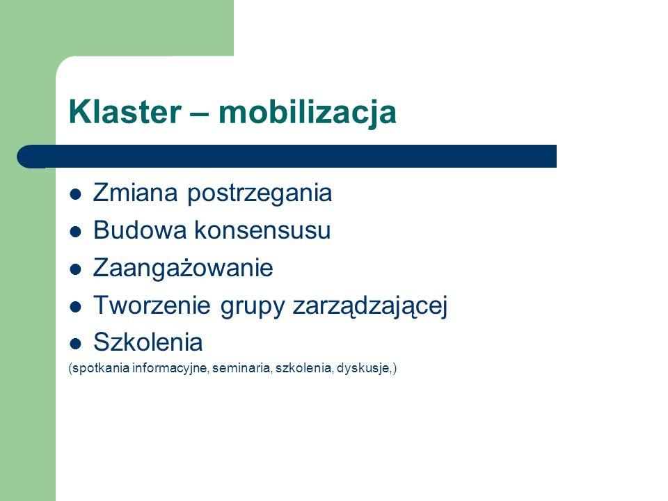 Klaster – mobilizacja Zmiana postrzegania Budowa konsensusu Zaangażowanie Tworzenie grupy zarządzającej Szkolenia (spotkania informacyjne, seminaria,