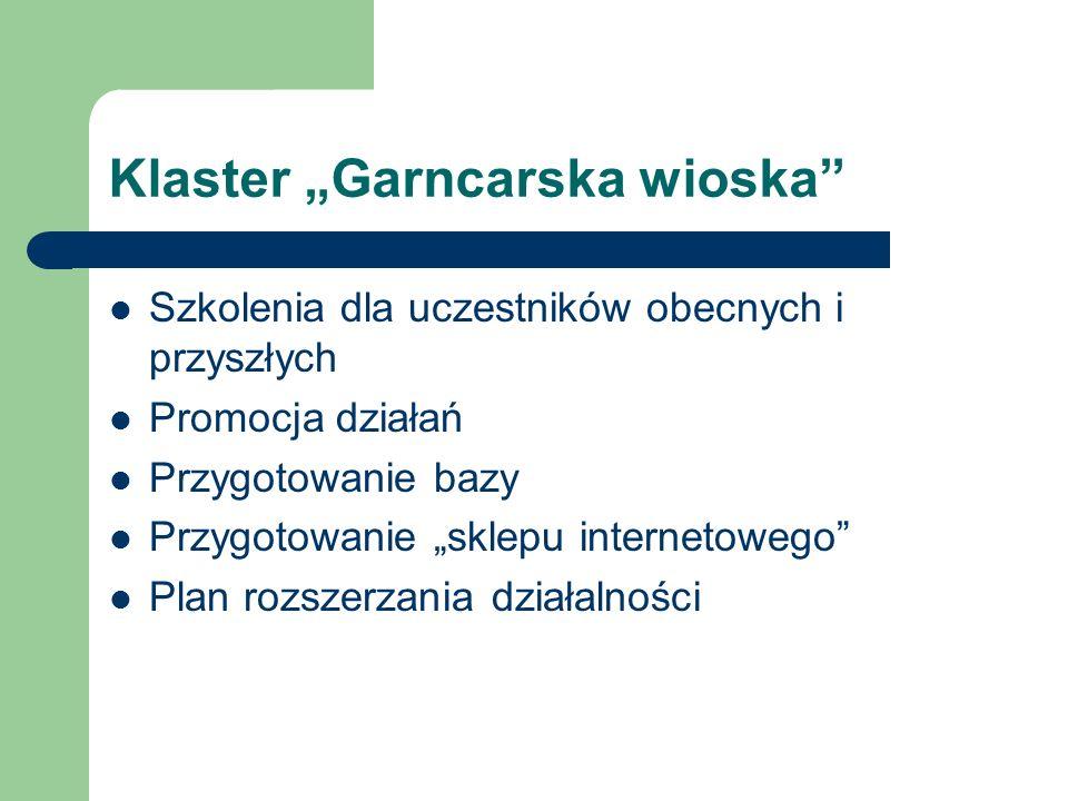 Klaster Garncarska wioska Szkolenia dla uczestników obecnych i przyszłych Promocja działań Przygotowanie bazy Przygotowanie sklepu internetowego Plan