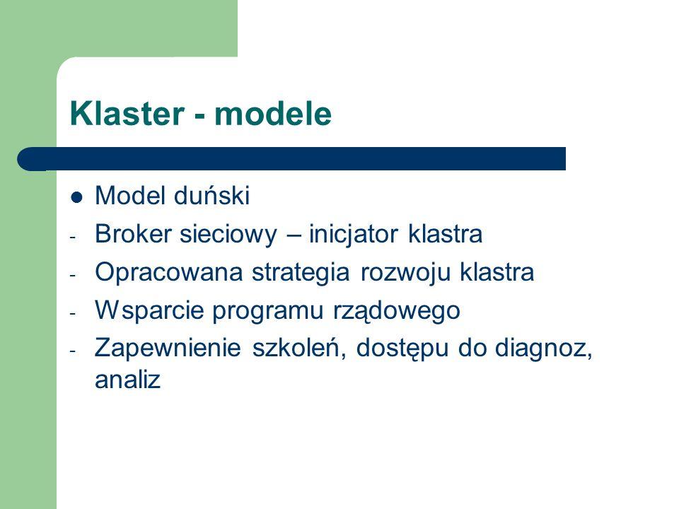 Klaster - modele Model holenderski - Ścisła współpraca z placówka naukową - Broker sieciowy - Nacisk na technologie i innowacje - Obniżenie kosztów wdrożeń prototypowych urządzeń i technologii - Aktywna polityka rządu
