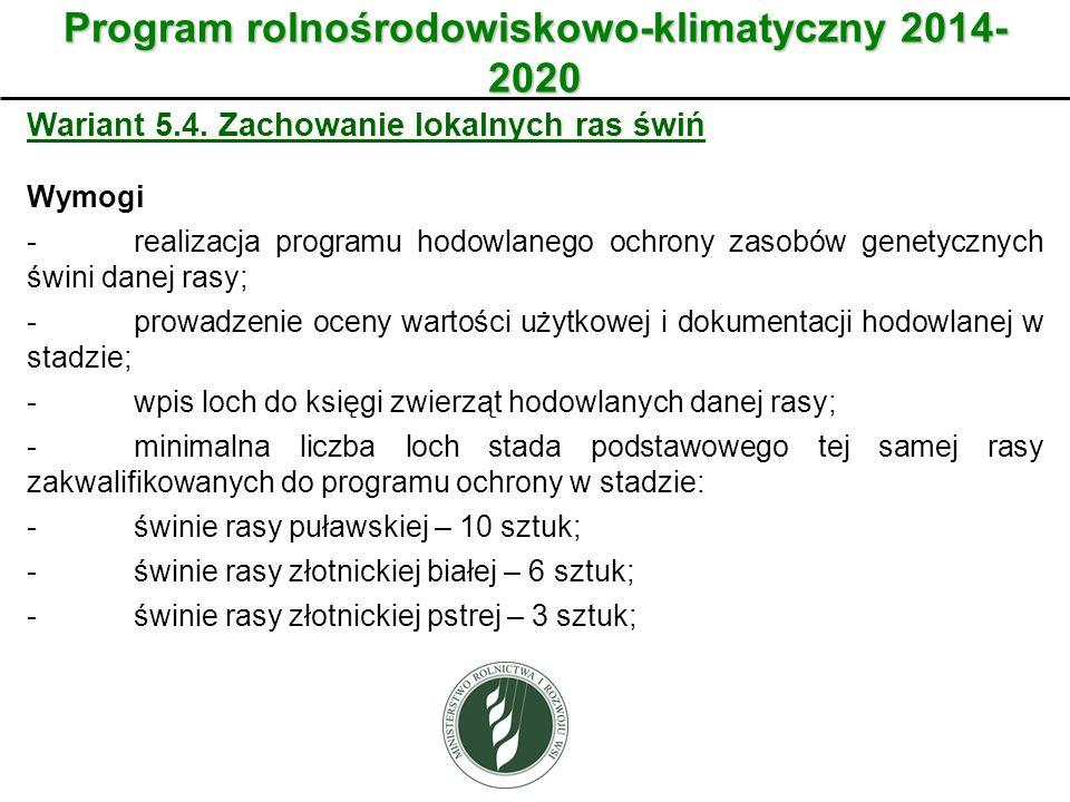 Wariant Program rolnośrodowiskowo-klimatyczny 2014- 2020 Wariant 5.4. Zachowanie lokalnych ras świń Wymogi -realizacja programu hodowlanego ochrony za