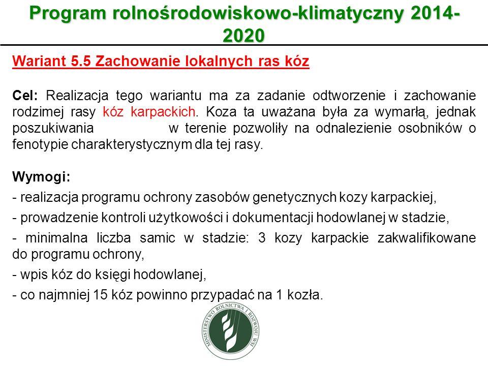 Wariant Program rolnośrodowiskowo-klimatyczny 2014- 2020 Wariant 5.5 Zachowanie lokalnych ras kóz Cel: Realizacja tego wariantu ma za zadanie odtworzenie i zachowanie rodzimej rasy kóz karpackich.