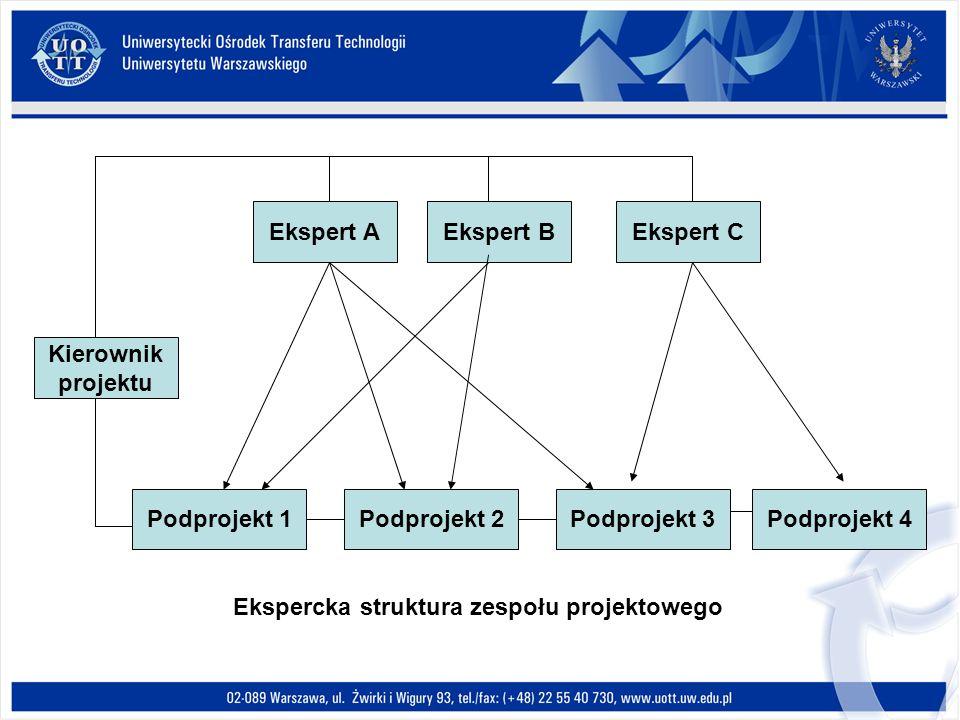 Kierownik projektu Ekspert AEkspert BEkspert C Podprojekt 1Podprojekt 2Podprojekt 3Podprojekt 4 Ekspercka struktura zespołu projektowego
