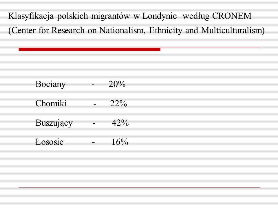 Klasyfikacja polskich migrantów w Londynie według CRONEM (Center for Research on Nationalism, Ethnicity and Multiculturalism) Bociany - 20% Chomiki - 22% Buszujący - 42% Łososie - 16%