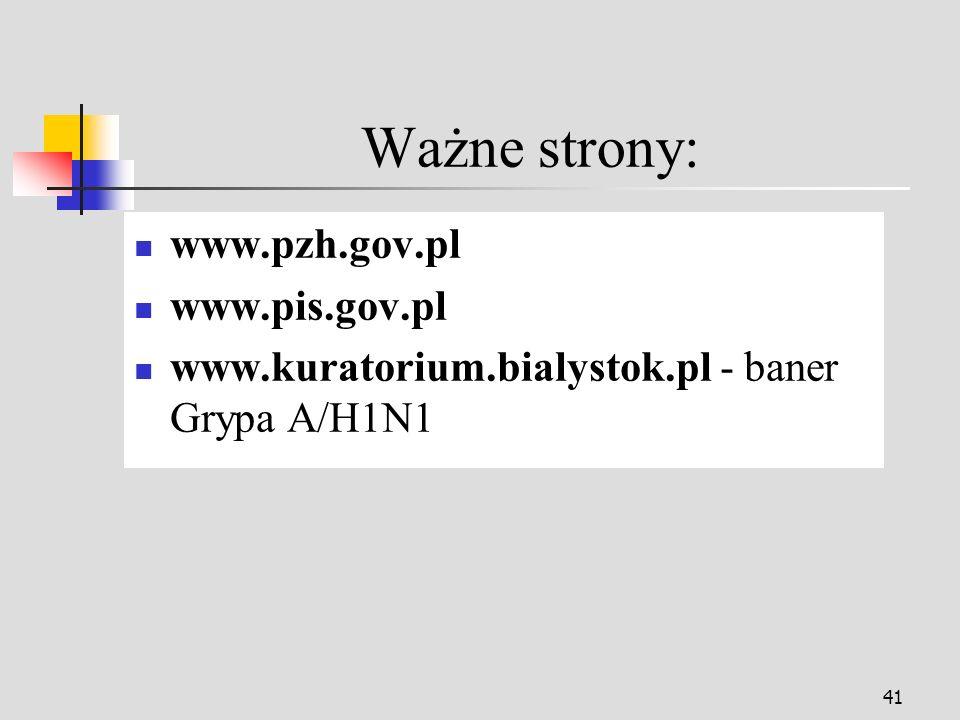41 Ważne strony: www.pzh.gov.pl www.pis.gov.pl www.kuratorium.bialystok.pl - baner Grypa A/H1N1