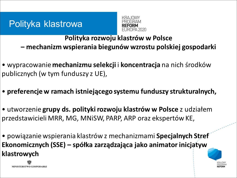 wstęp 01 Polityka klastrowa Polityka rozwoju klastrów w Polsce – mechanizm wspierania biegunów wzrostu polskiej gospodarki wypracowanie mechanizmu sel
