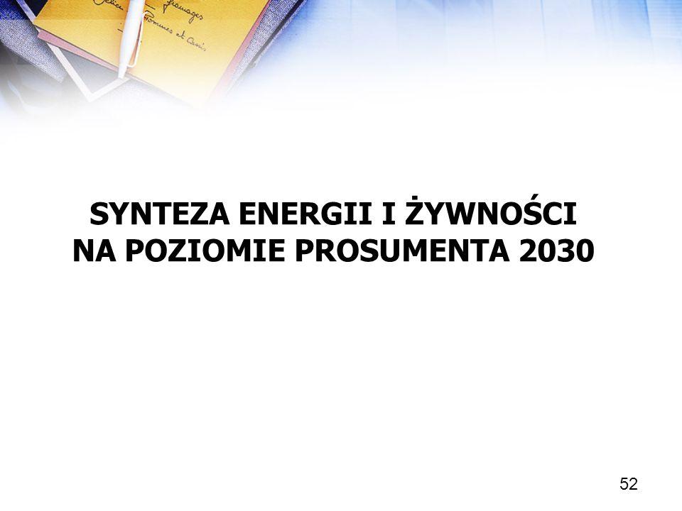 52 SYNTEZA ENERGII I ŻYWNOŚCI NA POZIOMIE PROSUMENTA 2030