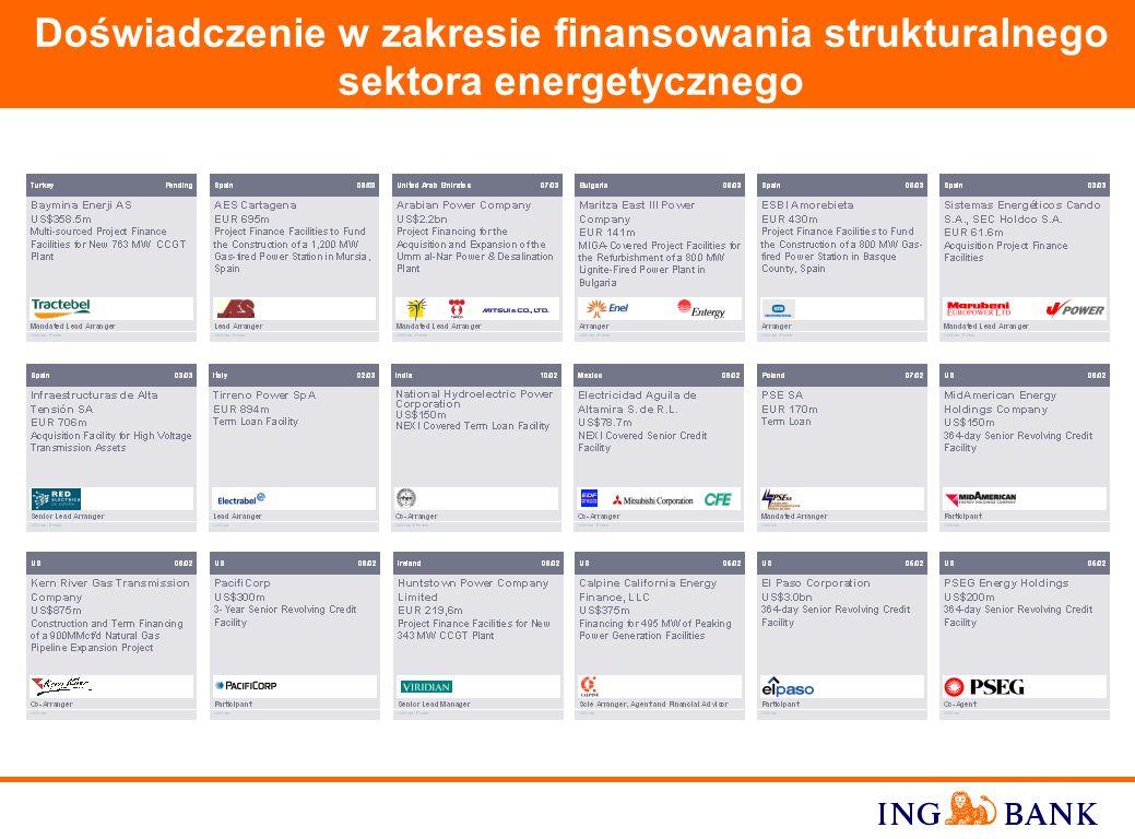 17 Polska 02/01 Organizator, Agent, Dealer PLN 250 million Makro Cash and Carry Polska S.A. Program Emisji Obligacji gwarantowanych przez METRO AG Pol