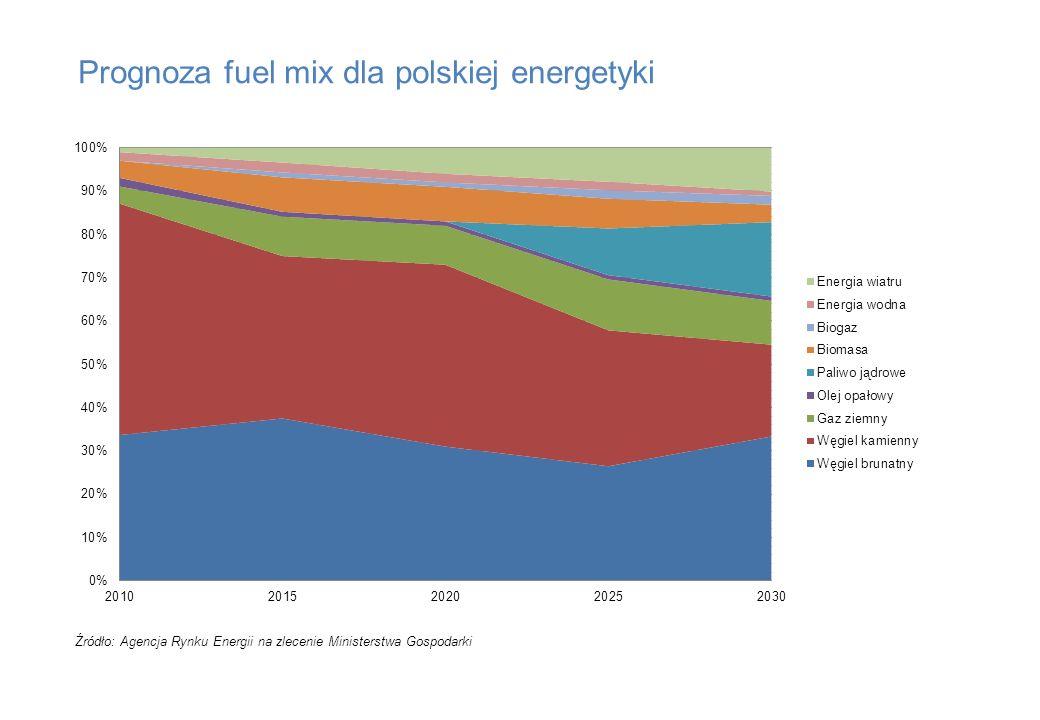 Prognoza fuel mix dla polskiej energetyki Źródło: Agencja Rynku Energii na zlecenie Ministerstwa Gospodarki