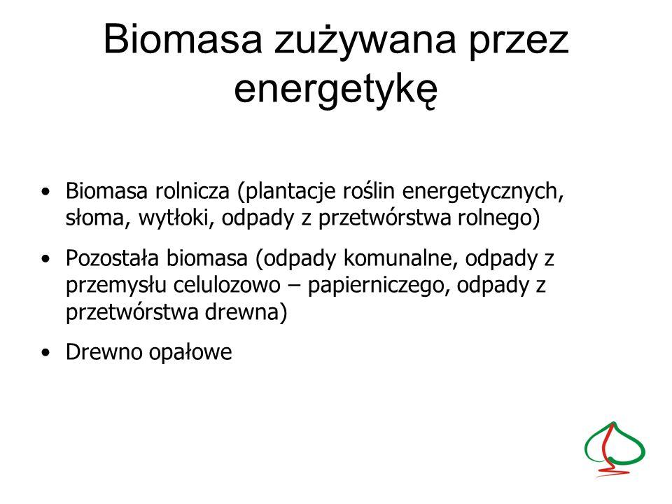 Biomasa zużywana przez energetykę Biomasa rolnicza (plantacje roślin energetycznych, słoma, wytłoki, odpady z przetwórstwa rolnego) Pozostała biomasa