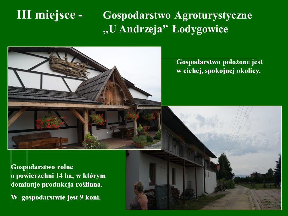 III miejsce - Gospodarstwo Agroturystyczne U Andrzeja Łodygowice Gospodarstwo rolne o powierzchni 14 ha, w którym dominuje produkcja roślinna. W gospo