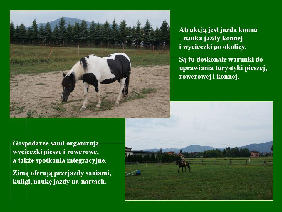 Atrakcją jest jazda konna - nauka jazdy konnej i wycieczki po okolicy. Są tu doskonałe warunki do uprawiania turystyki pieszej, rowerowej i konnej. Go