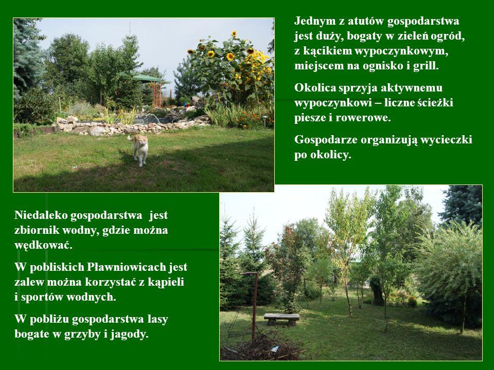Jednym z atutów gospodarstwa jest duży, bogaty w zieleń ogród, z kącikiem wypoczynkowym, miejscem na ognisko i grill. Okolica sprzyja aktywnemu wypocz