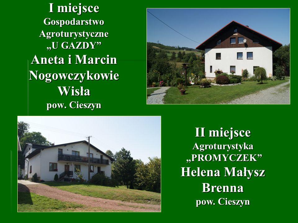 III miejsce Agroturystyka U ANDRZEJA Andrzej Dobija Łodygowice pow.