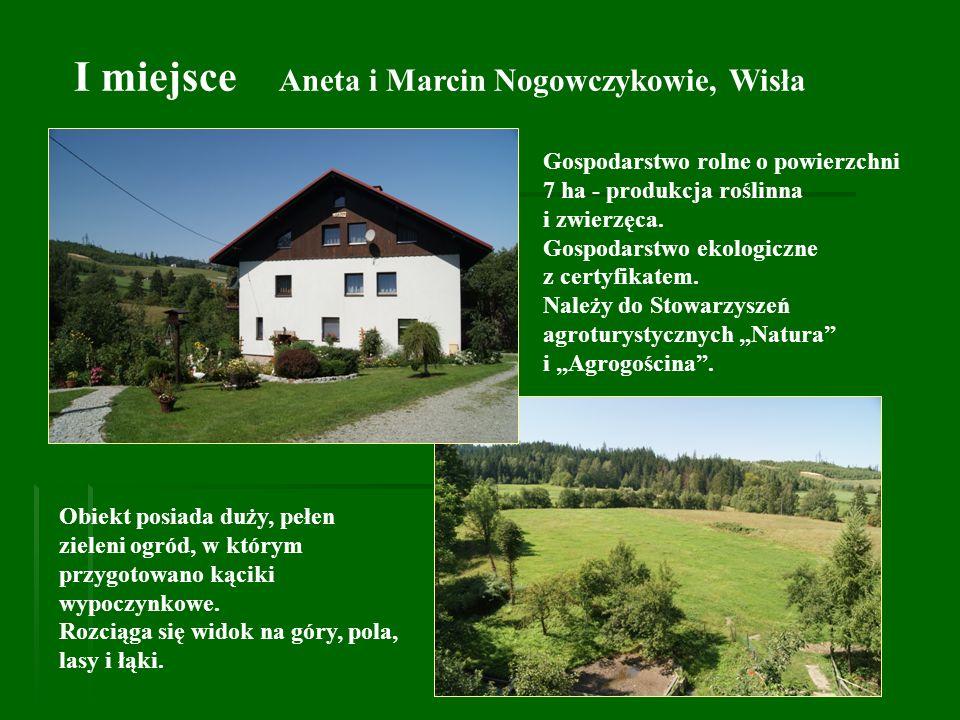 I miejsce Aneta i Marcin Nogowczykowie, Wisła Obiekt posiada duży, pełen zieleni ogród, w którym przygotowano kąciki wypoczynkowe. Rozciąga się widok