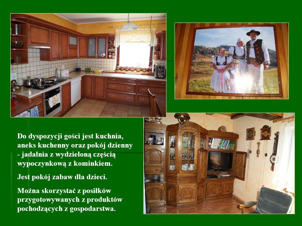 Do dyspozycji gości jest kuchnia, aneks kuchenny oraz pokój dzienny - jadalnia z wydzieloną częścią wypoczynkową z kominkiem. Jest pokój zabaw dla dzi