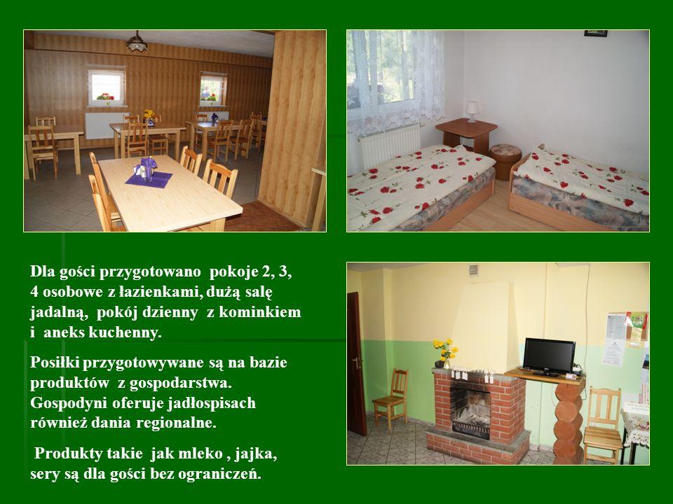Dla gości przygotowano pokoje 2, 3, 4 osobowe z łazienkami, dużą salę jadalną, pokój dzienny z kominkiem i aneks kuchenny. Posiłki przygotowywane są n